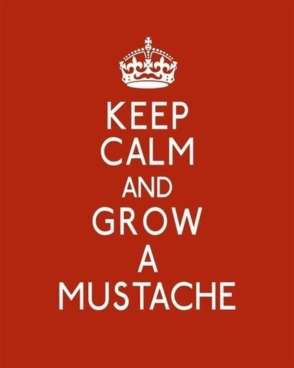 Mantén la calma y déjate crecer el bigote